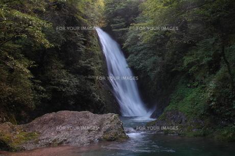 金山四つ滝・夏の素材 [FYI00331251]