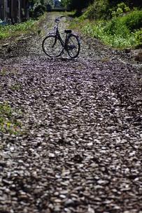 廃線の自転車の写真素材 [FYI00331262]