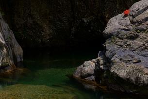 渓谷の岩とカワサツキの写真素材 [FYI00332262]