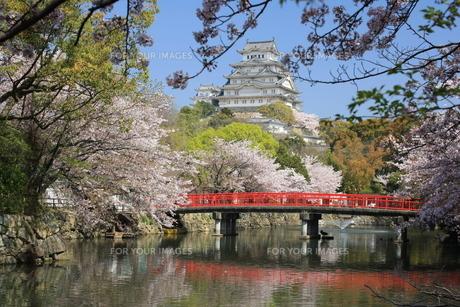 姫路城の写真素材 [FYI00332275]