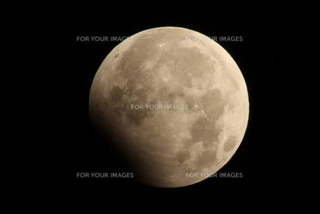 月食の素材 [FYI00332278]