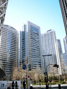 新宿の街並みと青空の写真素材 [FYI00332281]