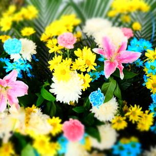 タイの供物花の写真素材 [FYI00332309]