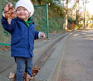 枯葉を持って微笑む赤ちゃんの写真素材 [FYI00332310]