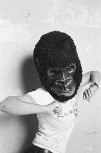 猿のお遊戯の写真素材 [FYI00332336]