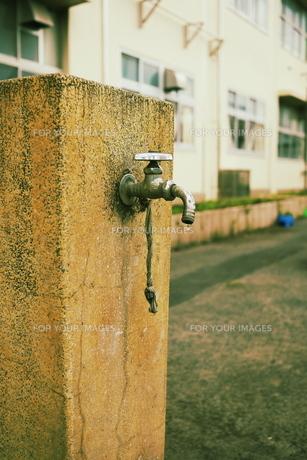 公園の水道水の素材 [FYI00332554]