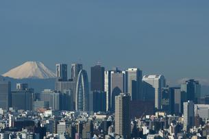 新宿のビル街と富士山の写真素材 [FYI00332698]