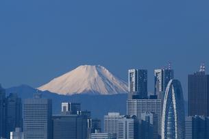 富士山と新宿高層ビル街の写真素材 [FYI00332704]