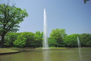 代々木公園の噴水の写真素材 [FYI00333408]