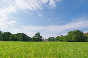 芝生と青空の写真素材 [FYI00333488]