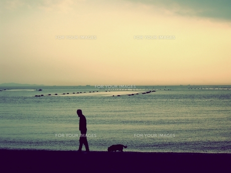 夕焼けの海を散歩する人と犬の素材 [FYI00333651]
