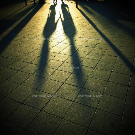 影の素材 [FYI00333674]