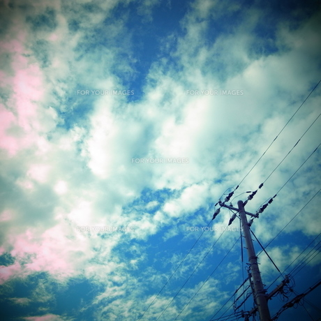 空と電線の素材 [FYI00333683]