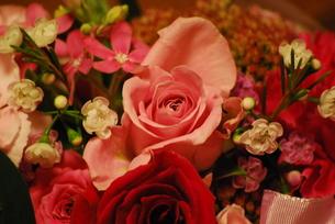 花束の写真素材 [FYI00333691]