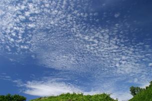 うろこ雲の写真素材 [FYI00333824]