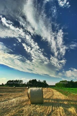 牧草ロールと雲の素材 [FYI00333836]