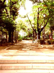 公園入り口の写真素材 [FYI00333869]