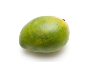 緑のマンゴーの写真素材 [FYI00333908]