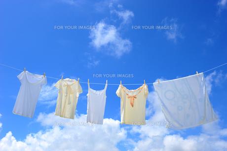 洗濯物と青空の素材 [FYI00333915]