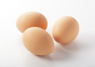 卵の写真素材 [FYI00334033]