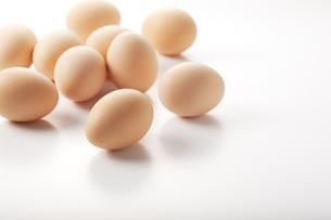 卵の写真素材 [FYI00334039]