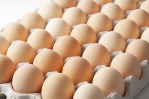 卵の写真素材 [FYI00334050]