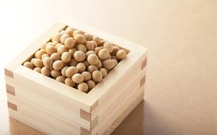 大豆と升の写真素材 [FYI00334057]