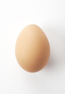 卵の写真素材 [FYI00334062]