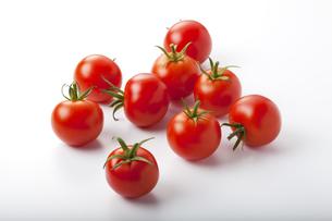 トマトの写真素材 [FYI00334071]