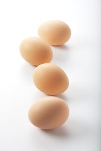 卵の写真素材 [FYI00334073]
