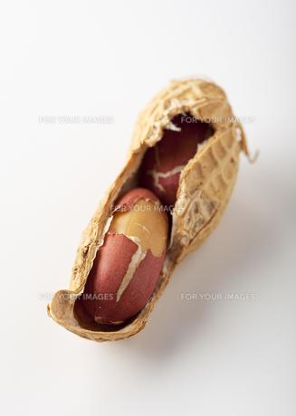 ピーナッツの写真素材 [FYI00334075]
