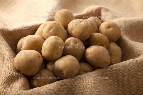 ジャガイモの写真素材 [FYI00334231]