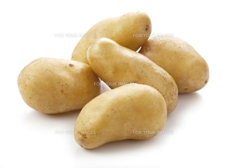 ジャガイモの写真素材 [FYI00334453]