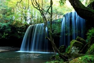 鍋ケ滝の写真素材 [FYI00334957]