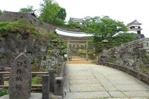 新緑の臼杵城跡の写真素材 [FYI00335060]