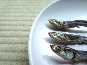 お皿の上の煮干しの写真素材 [FYI00335185]