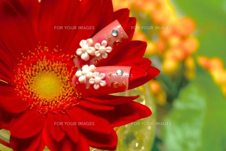 花とネイルアートの写真素材 [FYI00335387]