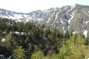残雪の富良野岳の写真素材 [FYI00335391]