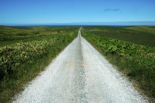 海へと続く白い道の写真素材 [FYI00335397]