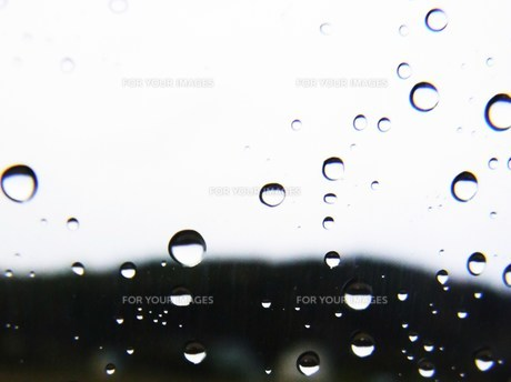 雨のしずくの素材 [FYI00335586]