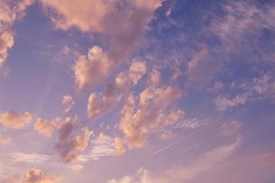 夕焼けの空・飛行機雲 3の写真素材 [FYI00335588]