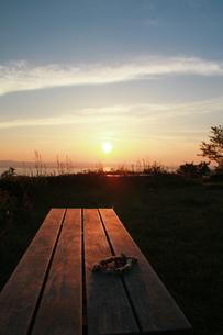 シロツメグサのティアラの写真素材 [FYI00335645]