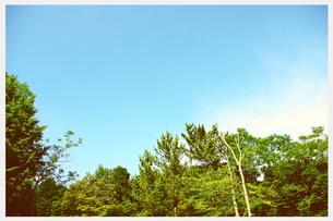 初夏の風景の写真素材 [FYI00335658]