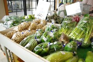 道の駅の野菜の写真素材 [FYI00335671]