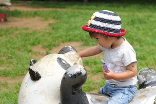 公園の遊具に乗る男の子の写真素材 [FYI00335708]