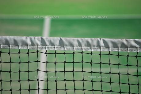 テニスコートの写真素材 [FYI00335754]