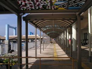 石垣島の離島桟橋の素材 [FYI00335794]