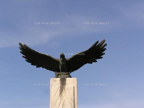 石垣島 カンムリワシの銅像の素材 [FYI00335834]