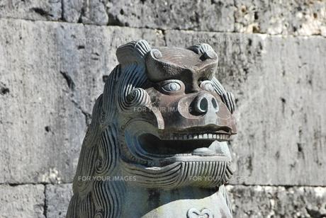 首里のシーサーの素材 [FYI00335894]