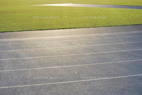 陸上競技 トラックと芝生の写真素材 [FYI00335904]